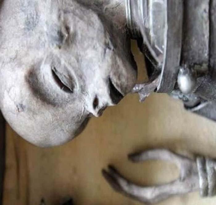 corpo alieno ritrovato nella casella 24-2