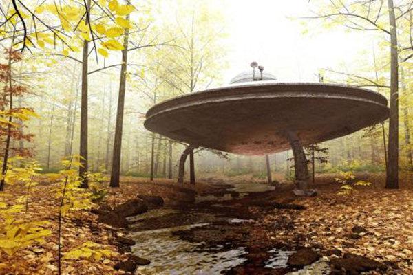 disco volante nel bosco