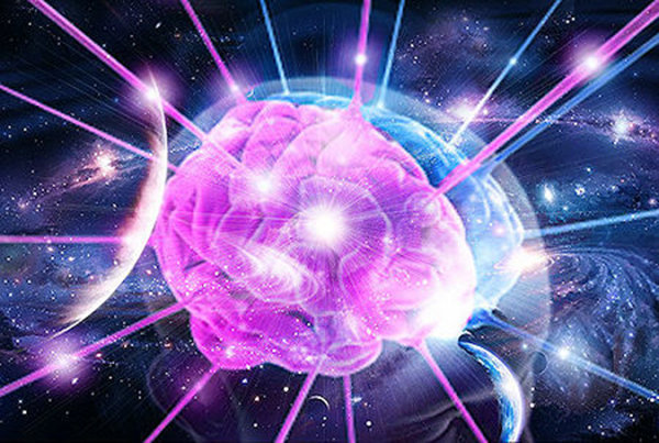 come funziona il cervello umano