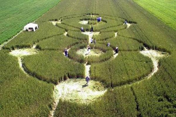 Visitatori nei cerchi nel grano