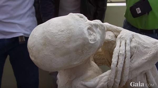 Mummia-aliena maria mummie di nazca