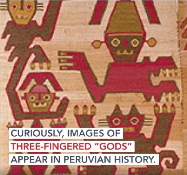 dei a tre dita peruviani