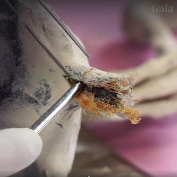 pelle della mummia