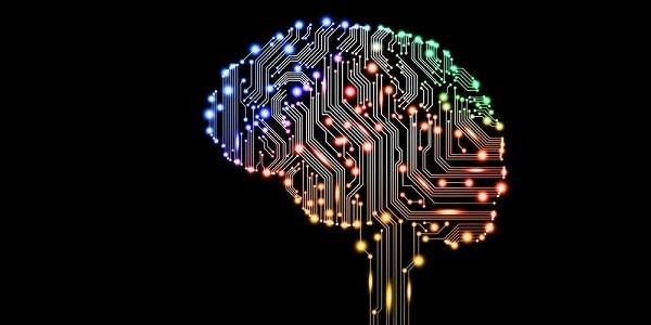 connessione cervello umano a internet