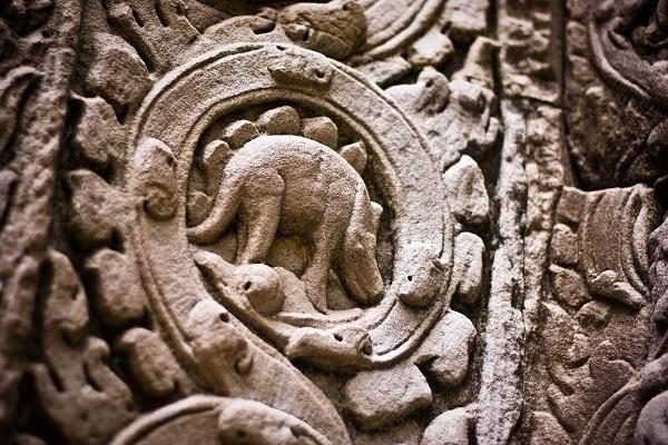 dinosauro tempiocambogiano