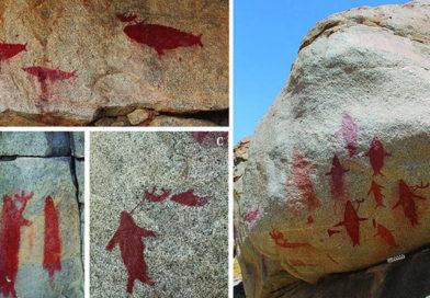 Antica pittura rupestre di balene e squali trovata nel deserto del Cile