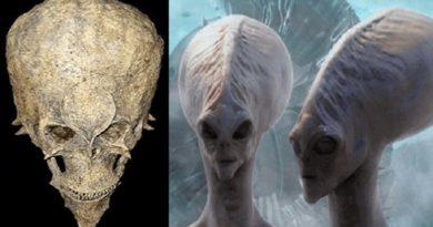 Trovato teschio alieno in Africa? Questo potrebbe cambiare la storia dell'umanità