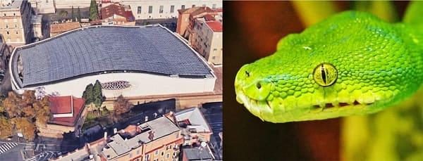 vaticano-serpente